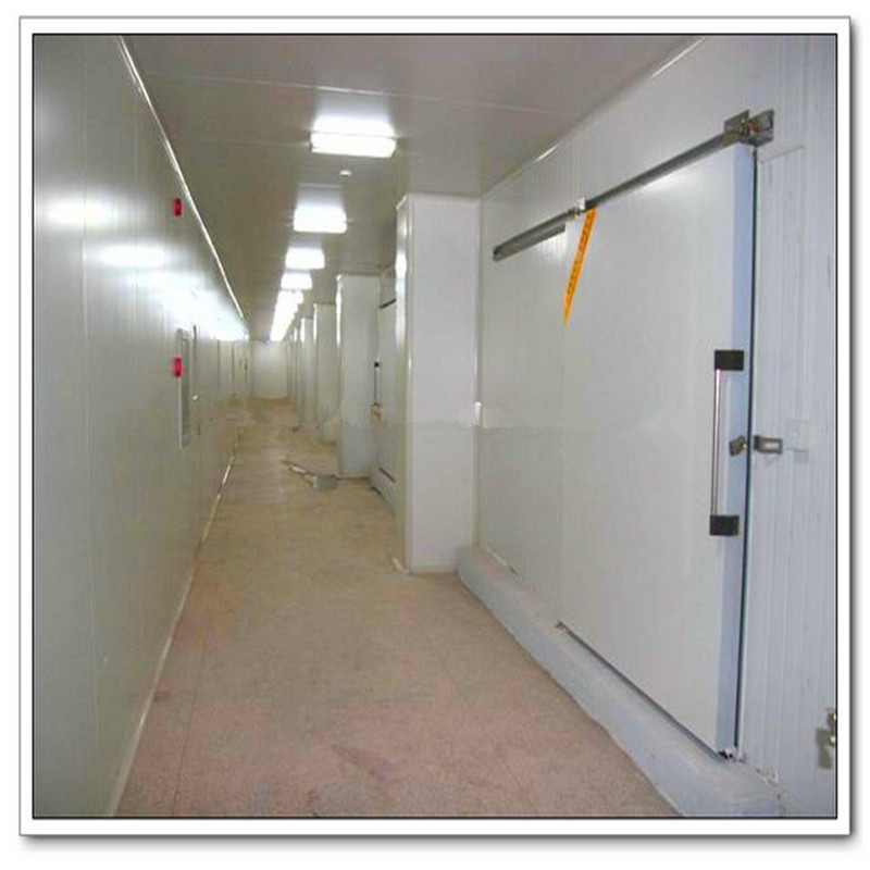 Chiller walk in cool cooler freezer units walk in cold for Walk in freezer motor